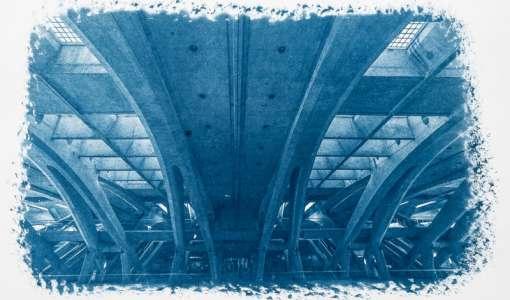 Cyanotypie Digital: Kunst der blauen Bilder