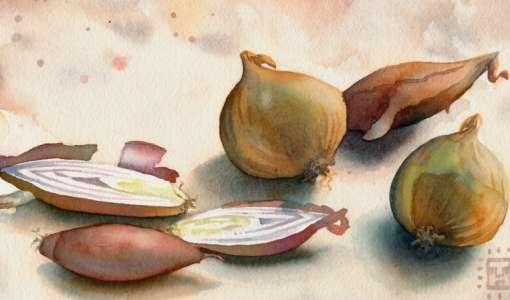 Aquarell für Anfänger - die Lasurtechnik